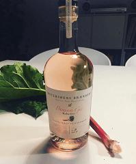 Premium Rabarber Gin 42%